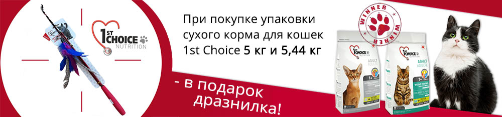 дразнилка 1st Choice