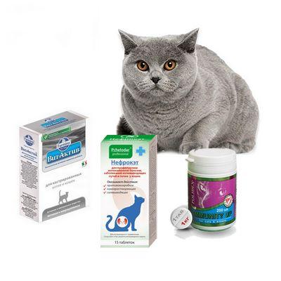 витамины и добавки для кошек - иконка