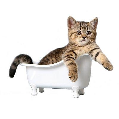 средства ухода для кошек - иконка