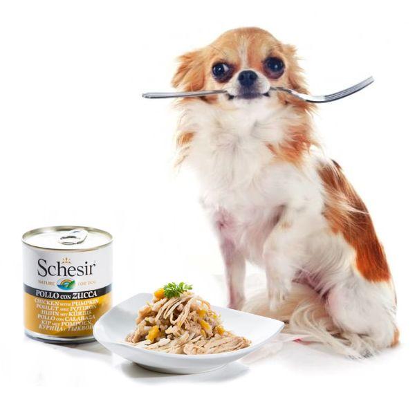 консервы для собак - иконка