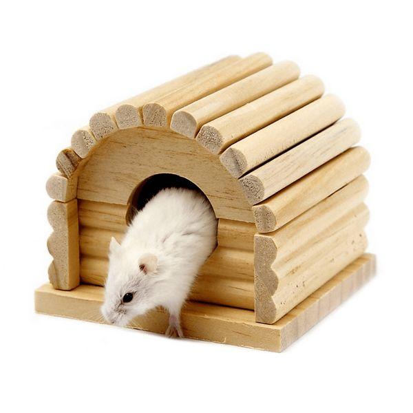 домики и игрушки для грызуов - иконка